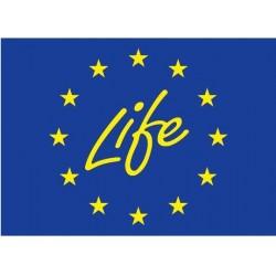 SOSİAD, Avrupa Komisyonu Tarafından Desteklenen Real Alternatives for LIFE Projesi'nin İkinci Safhasında Sosyal Ortak Olarak Yer Alıyor