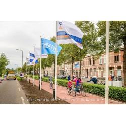 İlk plastik bisiklet yolu 30 metre uzunluğunda ve Hollanda'nın Zwolle şehrinde bulunan Lindestraat ve Verenigingstraat bölgeleri arasındaki Deventerstraatweg'in yanında yer alıyor.