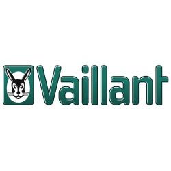 Ankara'da gerçekleştirilen Türk-Alman Enerji Forumu'nda Vaillant Group Türkiye Ürün Yönetimi Müdürü Ahmet Bozgeyik konuşma yaptı