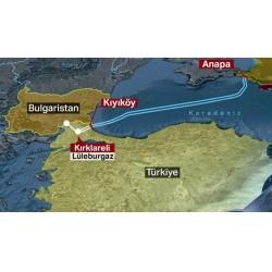 Boru hattı, toplam kapasitesi 31,5 milyar metreküp olan iki hattan oluşuyor.