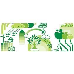 Yeşil bina kavramı